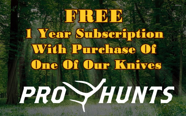 free_subscription
